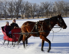 Ron and Laura enjoying the sleigh ride.